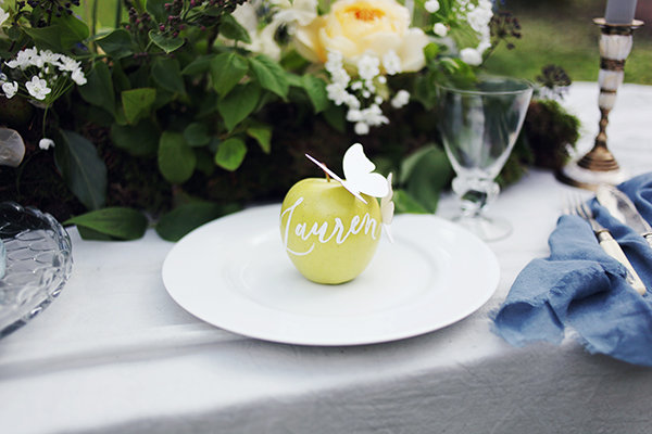 Hand painted place settings on an apple with paper butterlies.